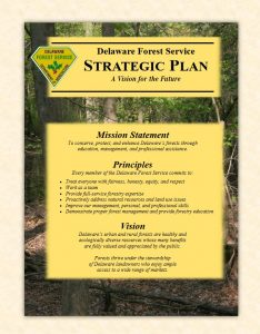 DFS Strategic Plan Summary