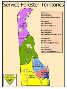 Delaware Service Forester Map 2018