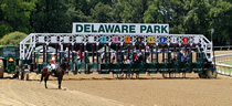 Thoroughbred Racing Commission