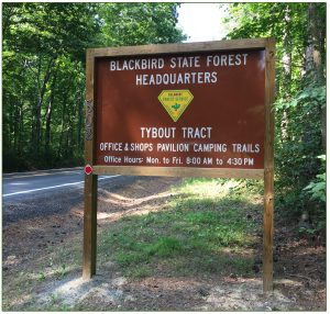 Blackbird State Forest sign