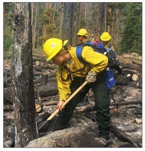 Delaware Wildfire Crew