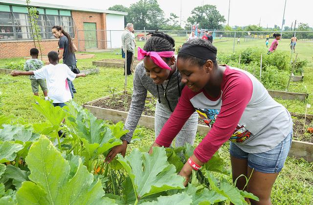 Two women tending to plants in a garden