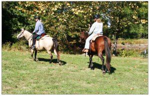 Horseback riding at Redden State Forest