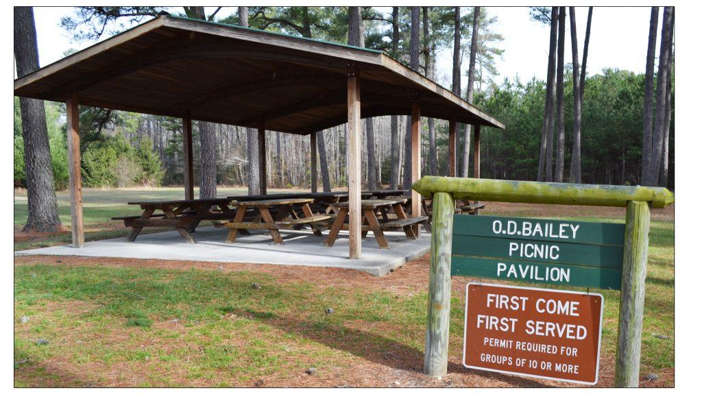Redden Forest pavilion