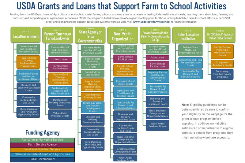 USDA Grants & Loans that Support Farm to School Activities Graphic