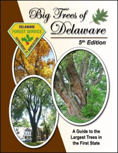 Big Trees of Delaware