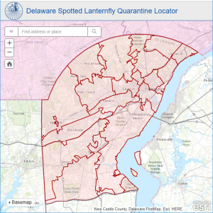 This map depicts the area in New Castle County above the Chesapeake and Delaware Canal that is quarantined for spotted lanternfly.