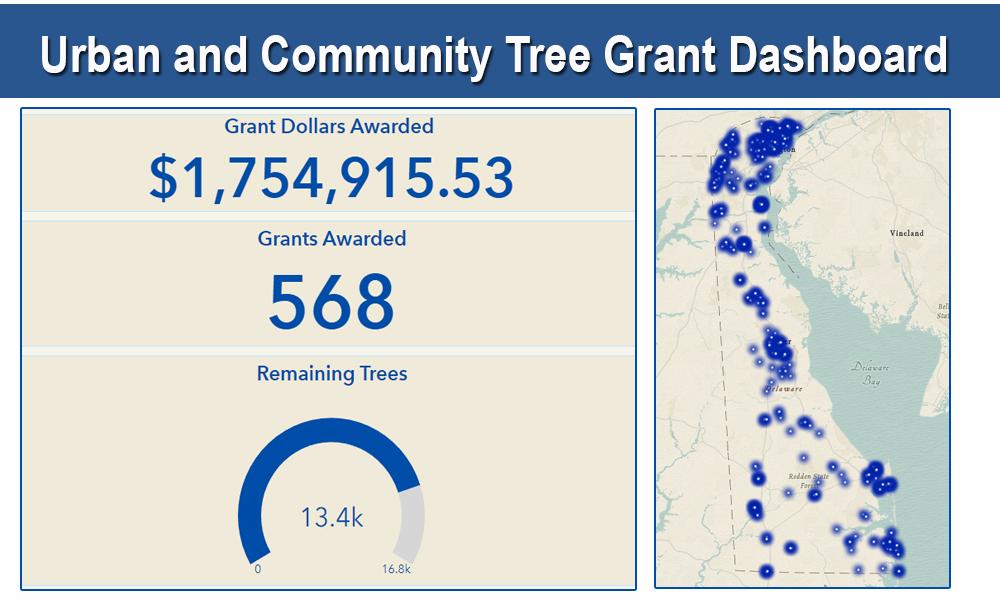 Tree dashboard