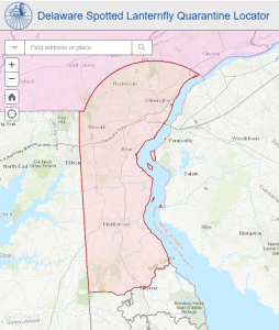 This map depicts New Castle County shaded in pink to show the spotted lanternfly quarantine as of July 1, 2020