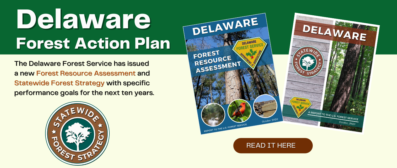 Delaware Forest Action Plan