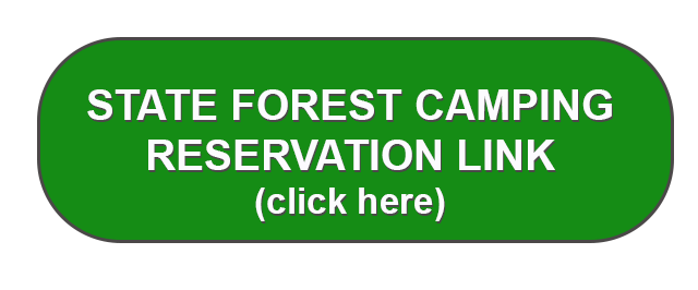 State forest camping reservation link