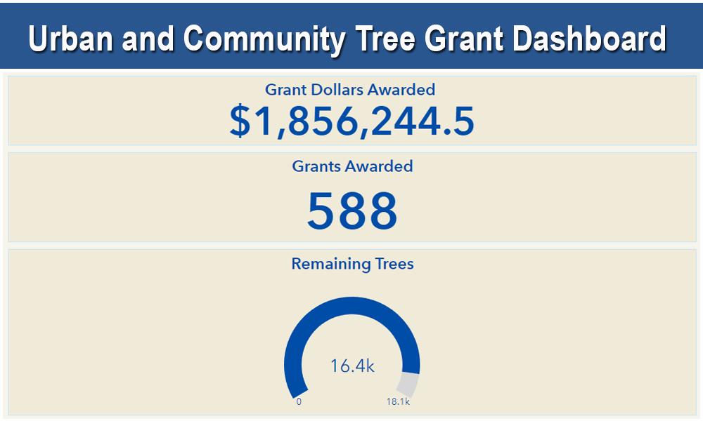 Tree Grant Dashboard
